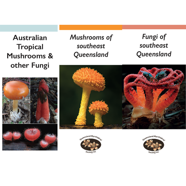 Covers of three guides